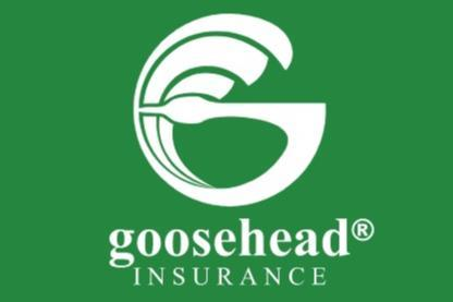 Insurance agency Goosehead grows organic revenue 59% in Q4 ...