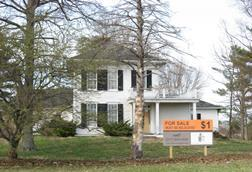 Cotton ropkey house for sale (1)